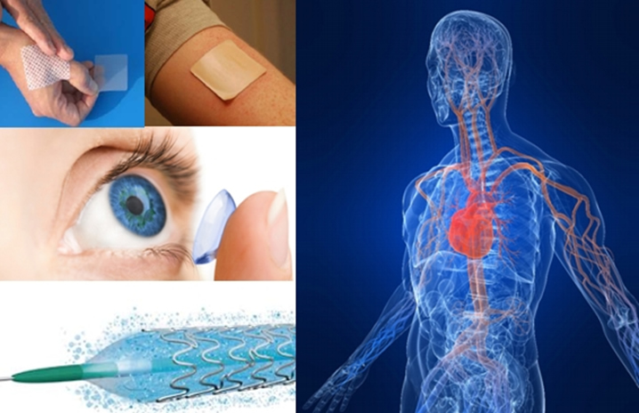 biomaterials utilized in the medical device industry is polymeric hydrogels